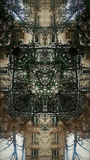 w°}≠{°m Acidic Vhsglitch Mobileartistry Symmetrical BuildingPorn Street House