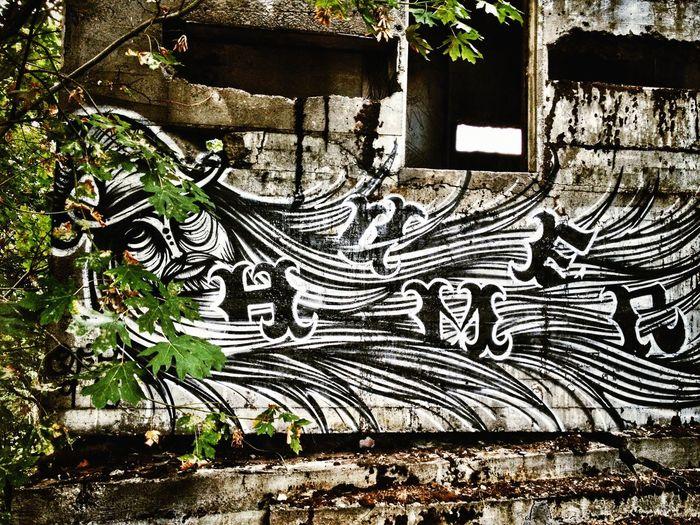 Graffiti Check
