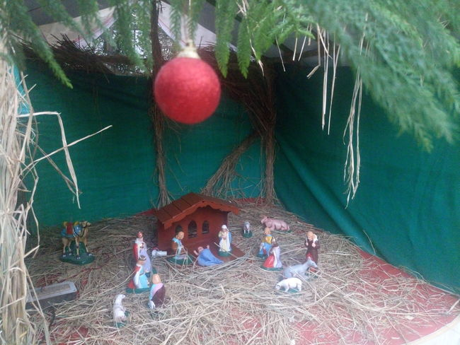 Celebration Childhood Christmas Christmas Collection Christmas Decoration Christmas Ornament Christmas Tree Crib Day Holiday - Event Indoors  Merry Christmas Merry Christmas Eve! Merry Christmas! Nativity Church Nativity Figurine Nativity Scene Nature No People Traveling Home For The Holidays Tree