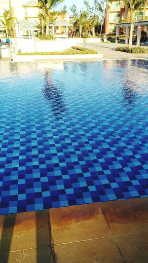 Cayo Coco Cuba Water Swimming Swimming Pool Tree Tile Pattern Architecture Built Structure