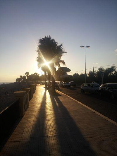 Car Sunlight
