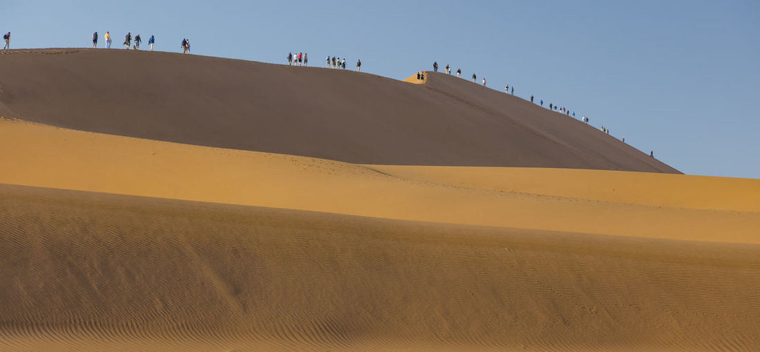People are Climbing the 'Big Papa', a dune adjacing Doodvlei, a valley in the Desert of Namibia Doodvlei Holiday Namibia Landscape Sesriem, Namibia Travel Arid Climate Beauty In Nature Desert Environment Landscape Nature Red Dunes Sand Dune Scenics - Nature Southern African Tranquil Scene Tranquility Vacation