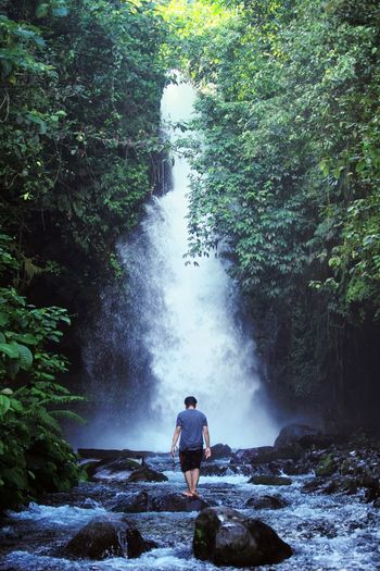 do it Travel Photography Rain Forest The Traveler - 2018 EyeEm Awards Water Waterfall Adventure Men Forest Hiking River Exploration Rear View Tree
