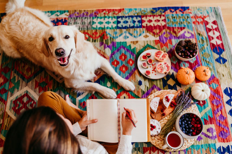 High angle view of woman writing in diary while sitting with dog on carpet at home