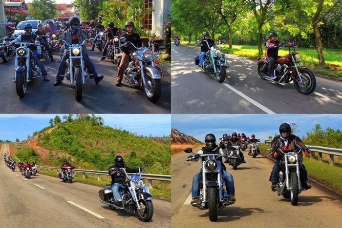 Hanging Out Harley Davidson Touring Otomotive