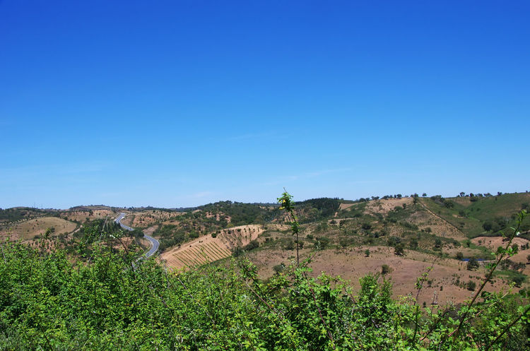 mountains of Algarve region, south of Portugal South River Algarve Algarve Portugal Beauty In Nature Forest Green Landscape Mediterranean  Mountain Nature Outdoors Scenics Sky Tree Vegetation