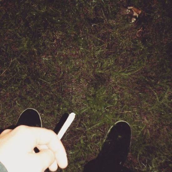 Seawall last night at 2.30am Stayed Out All Night Just For The Thrill Of IT WeedPorn Weedstagram Ganja L4l F4F
