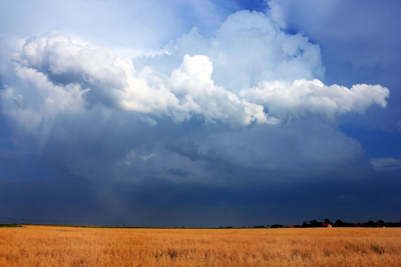 Agricultural Land Agriculture Photography Beauty In Nature Cloud - Sky Day Growth Landscape Landscape_Collection Landscape_photography Nature No People Outdoors Scenics Sky Storm Storm Cloud Stormy Stormy Weather Tranquility