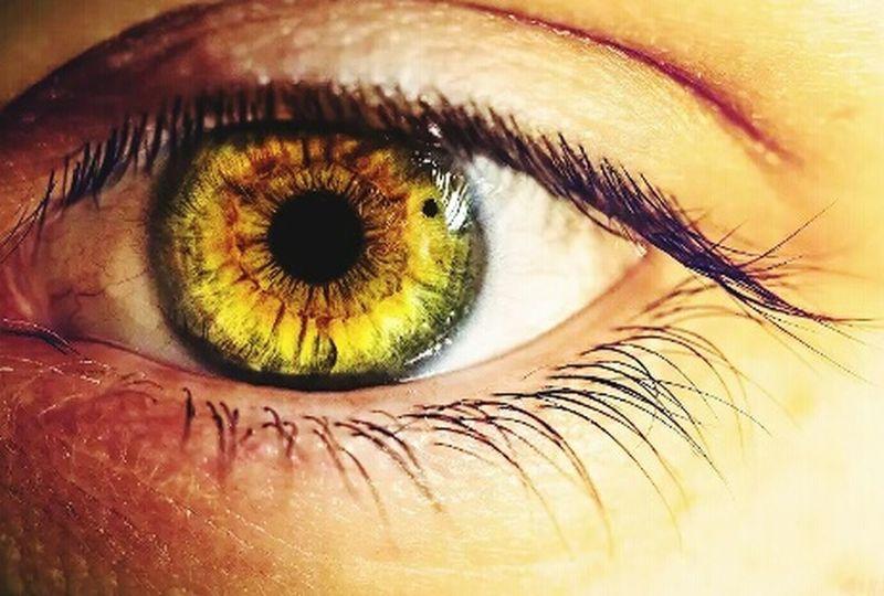 Eyes Following