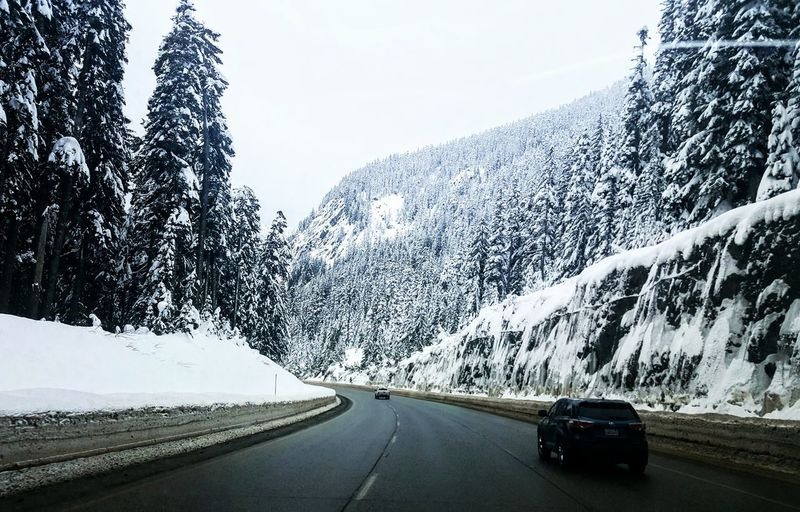 Thanks God for your wonderful creations in this world! Travel Road Driving Journey Nature Mountain Godscreation Lifeisbeautiful Winter Wintertime Winter Trees Roadtrip Road Washington State Ski Holiday Wonderful Wonderful Day Wonderful Place