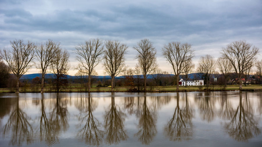Tree reflection in Bamberg Germany Bamberg  Baum Calm Cold Germany GERMANY🇩🇪DEUTSCHERLAND@ Hain Bamberg House Idyllic Nature Oberfranken Outdoors Plants Reflection River Scenics Symmetry Tranquil Scene Tranquility Trees Water Weather Winter Winter The Great Outdoors - 2016 EyeEm Awards