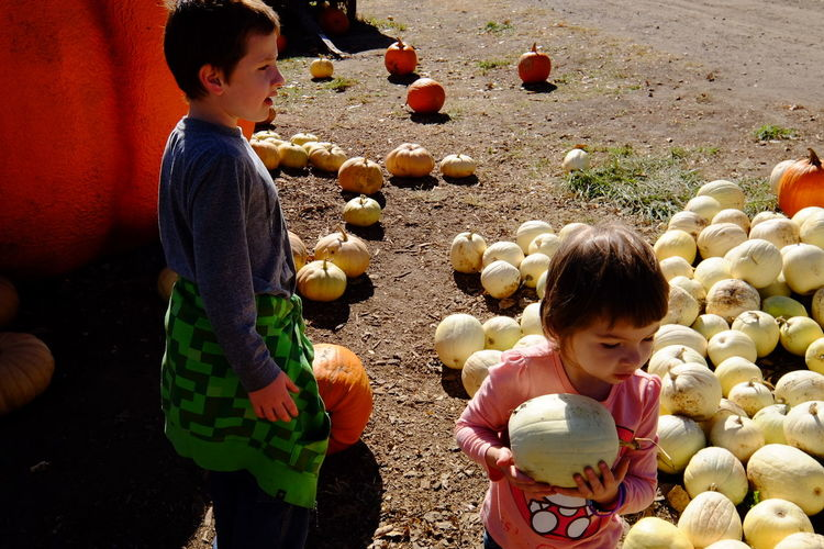 Roca Berry Farm in Village of Roca, Nebraska October 2015 A Day In The Life Autumn Check This Out Hanging Out Kids Being Kids October Outside Photo Essay Pumpkin Pumpkin Patch Roca Berry Farm The Purist (no Edit, No Filter) Messthetics