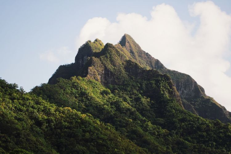 Kualoa ranch, where major movies were filmed EyeEm Ready   Beauty In Nature Day Low Angle View Mountain Nature No People Outdoors Peak Physical Geography Scenics Sky Tranquility Travel Destinations