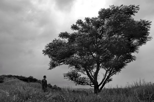 alone Bnwphotography Canon Blackandwhite Nature Indonesia_photography Eastjava Cultures INDONESIA Bnw Streetphotography Humaninterest Looking Nice Javanese Culture Streetphoto_bw Awesome Bnw_collection Perfect Landscape_Collection Wonderful Go Higher Wonderful Indonesia Pasuruan EyeEmNewHere Tree Rural Scene Men Silhouette Field Fog Sky Landscape Cloud - Sky Grass Single Tree Storm Cloud Lightning Overcast Dramatic Sky Cloudscape