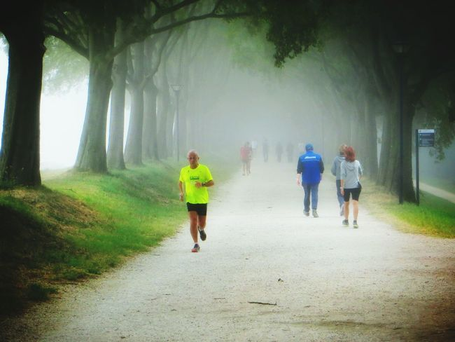 a hint of autumn Ferrara Ferrara- Italy Ferrara Wall Foggy Morning Fall Autumn Jogging
