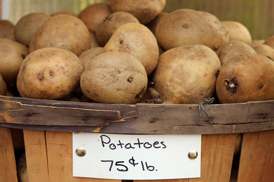 Potatoes Background Bushel Baskets Carbohydrate Close-up Farm Food Food And Drink For Sale Freshness Garden Food Harvest Healthy Eating Large Group Of Objects Market Outdoors Potatoes Produce Sign Stack Starch