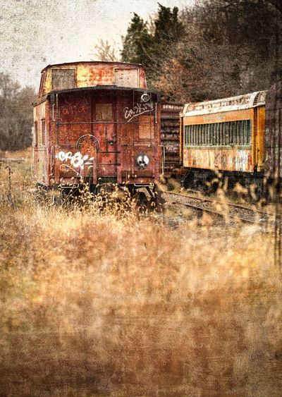 Textures Mode Of Transportation Abandoned Obsolete Transportation Rusty Old Land Vehicle Run-down Damaged Bad Condition Deterioration Decline Weathered Metal Grass Train Nature Land