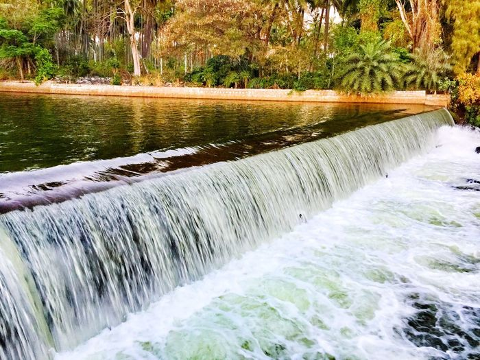 Water Scenics - Nature Flowing Water Beauty In Nature Motion Plant Nature River