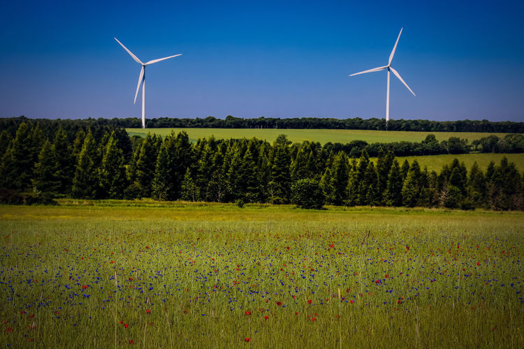 Alternative Energy Beauty In Nature Environment Environmental Conservation Field Fuel And Power Generation Grass Green Color Land Landscape Nature No People Outdoors Plant Power In Nature Renewable Energy Rural Scene Sky Sustainable Resources Technology Tree Turbine Wind Power Wind Turbine