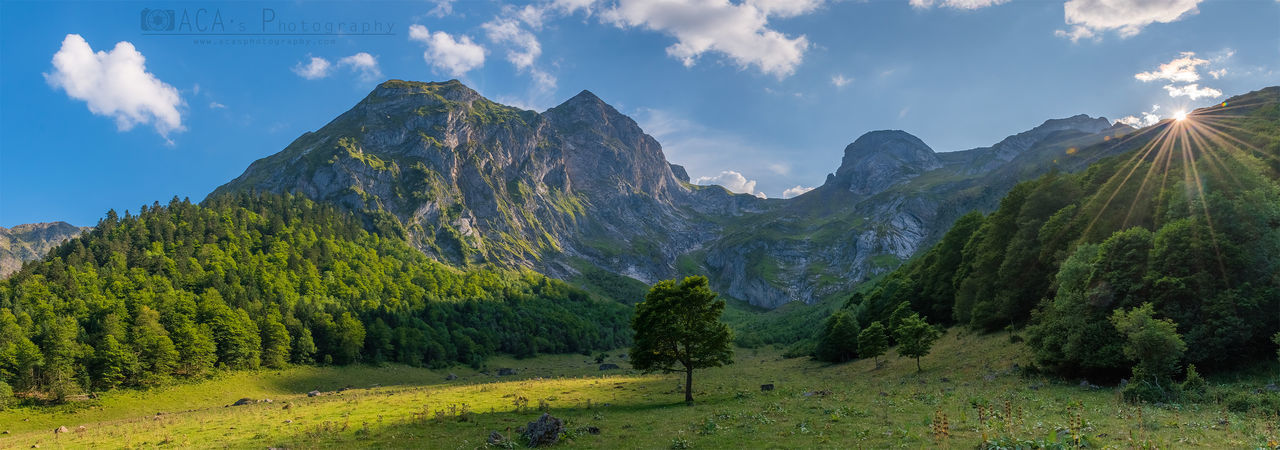mountain, scenics - nature, sky, beauty in nature, tranquil scene, tranquility, plant, tree, cloud - sky, environment, landscape, green color, non-urban scene, mountain range, nature, panoramic, idyllic, land, no people, growth, mountain peak