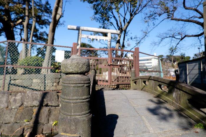 Fujifilm Fujifilm X-E2 Fujifilm_xseries Japan Japan Photography Shrine Tokyo Ueno 上野 日本 東京 神社