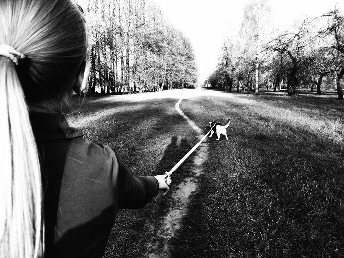 Dog My Dog I Love My Dog EyeEm Pets My Pets Silhouette Blackandwhite Black And White Walking Around The Action Photographer - 2015 EyeEm Awards