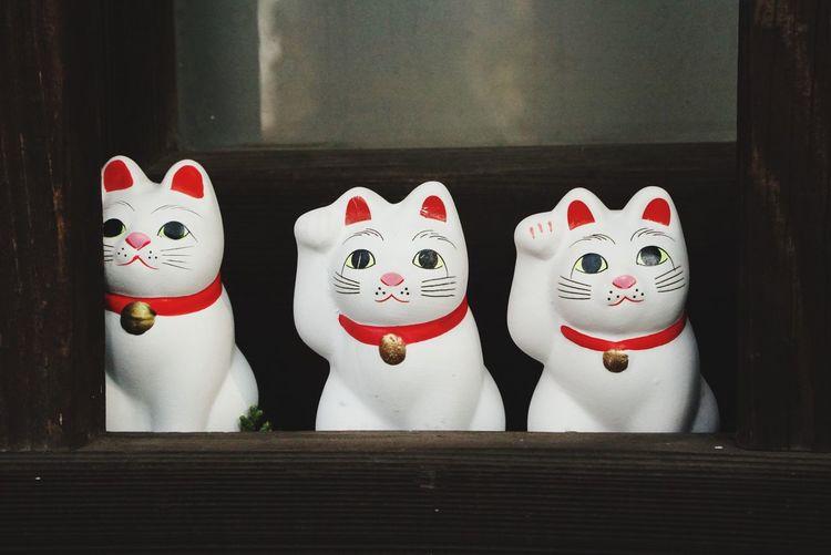 世田谷区 豪徳寺 No People 猫 招き猫 Japan Cat Culture Eyeemgallery 幸運 Happy