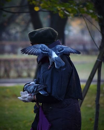 Pigeons Perching On Person Standing At Field