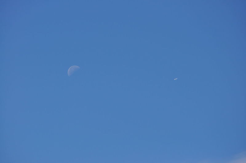Moon and Distant Airplane in a Clear Blue Sky Plane Airplane Astronomy Beauty In Nature Blue Clear Sky Crescent Flying Half Moon Low Angle View Moon Nature No People Outdoors Scenics Tranquil Scene Tranquility