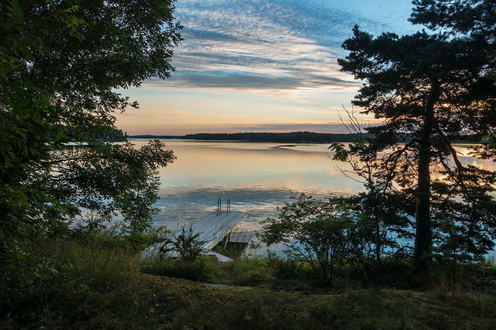 Archipelago on the Baltic Sea coast in Sweden. Archipelago Baltic Sea Morning Relaxing Sweden Trees Cloud - Sky Coast Day Island Journey Nature No People Outdoors Scenics Shore Sky Sunrise Sunup Tourism Tranquil Scene Travel Destinations Tree Vacation Water