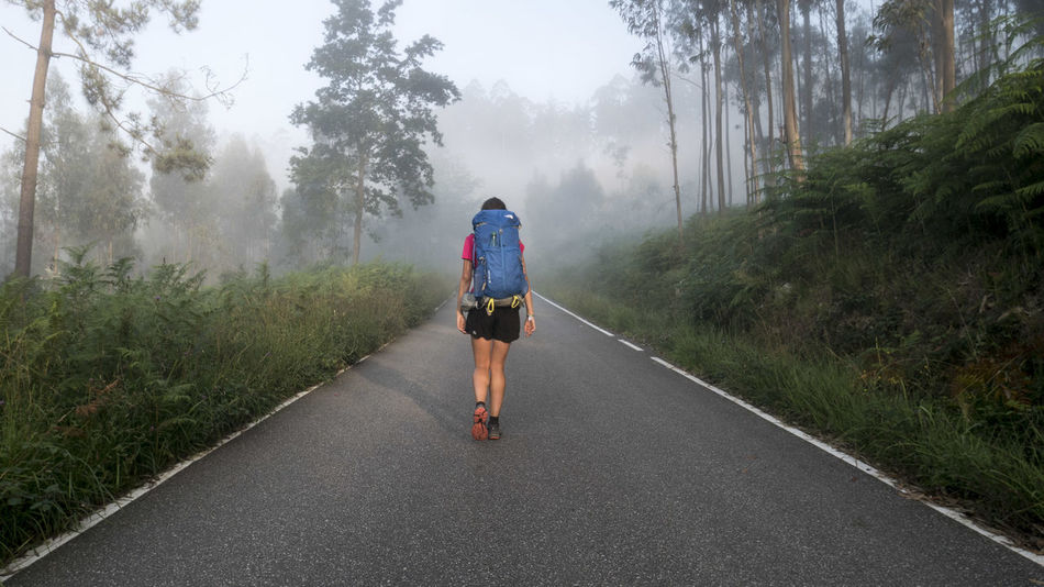 CaminodeSantiago SPAIN Your Ticket To Europe Beauty In Nature Casual Clothing Day Fog Full Length Grass Lifestyles Men Nature One Person Outdoors People Real People Rear View Road Scenics Sky The Way Forward Transportation Tree Walking