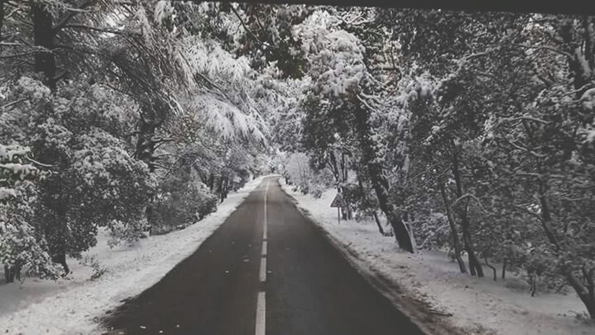 First Eyeem Photo Morocco The Places I've Been Today Ifrane Ifranecity Open Edit Neige👌👊❄️⛄️