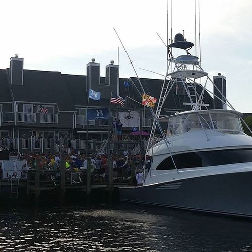 A White Marlin getting weighed in from the boat Makara.... WMO Wmo2015 Fishing Boat boatinglife oceancitycool oceancity maryland ocmd