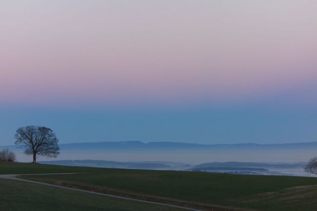 EyeEmNewHere Sunrise Morning Light Morning Sky Beautiful Colors Cold Temperature Quiet Moments Nature Landscape Tranquility Beauty In Nature Sky Rural Scene Sonyrx100 Beauty In Nature Switzerland Fribourg Fresh On Eyeem  Millennial Pink The Great Outdoors - 2017 EyeEm Awards