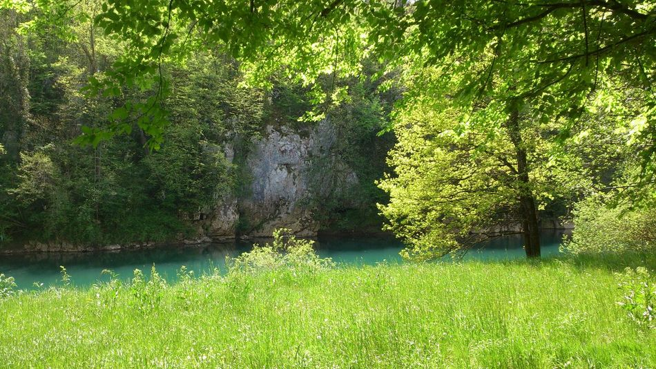 Natural Beauty Time Well Spent  Spring Into Spring Enyoing The View  Freeyourmind Nature Photography River Kolpa Slovenia