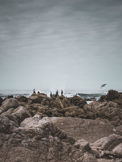 Rocky Coastline Beach Beauty In Nature Horizon Horizon Over Water Land Nature Outdoors Rock Rock - Object Rock Formation Scenics - Nature Sea Sky Solid Water