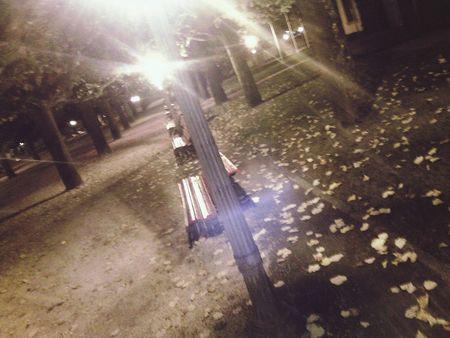Visão nocturna da cidade Walking Around Night Lights Trees Coimbra First Eyeem Photo