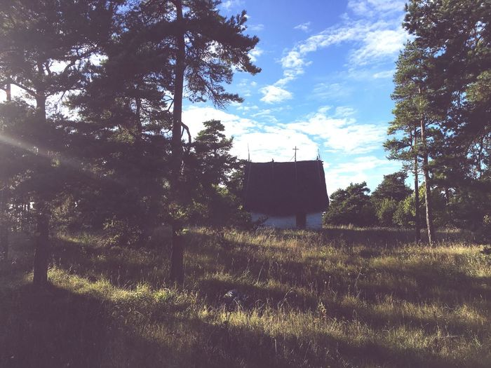 Tree Landscape Tranquil Scene Tranquility Solitude Field Remote Rural Scene Sky Fence Nature Day Scenics Countryside Beauty In Nature Outdoors Non-urban Scene Thatched Roof My Photography Sweden EyeEmBestPics EyeEm Best Shots
