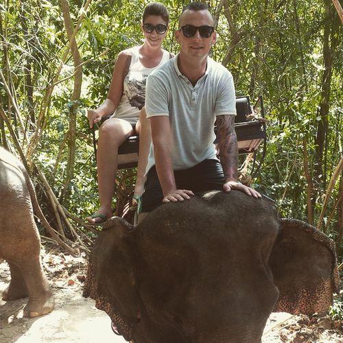 Elephanttrek Amazing Beautifulanimals Elephantsanctuary Lovethisplace Thailand2015