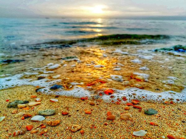Beauty of nature 🌿🍃 Pebble Beach Pebble Pebbles And Stones Landscape Landscape_Collection Landscape_photography Sea Beach Time Beach Sunlight ☀ Close-up Morning Light Waves Sea And Sky Sea Water Sea Waves Colrfull Beauty In Nature Beauty In Nature EyeEm Nature Lover Nature_collection Nature_collection Golden Hour Golden Beach Golden Sunset Colorful Nature Ras Sudr Egypt Egypt 2018 Sandy Beach