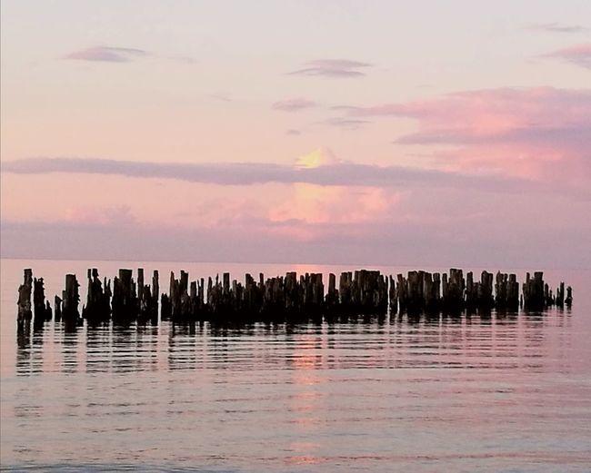 Sea Sea And Sky Seaside Seascape Batic Sea. Sunset Pink Color Dusk
