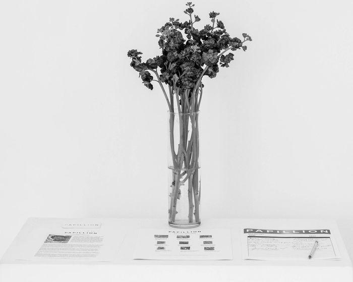 Papillion Art Museum Flowers Black And White Contrast