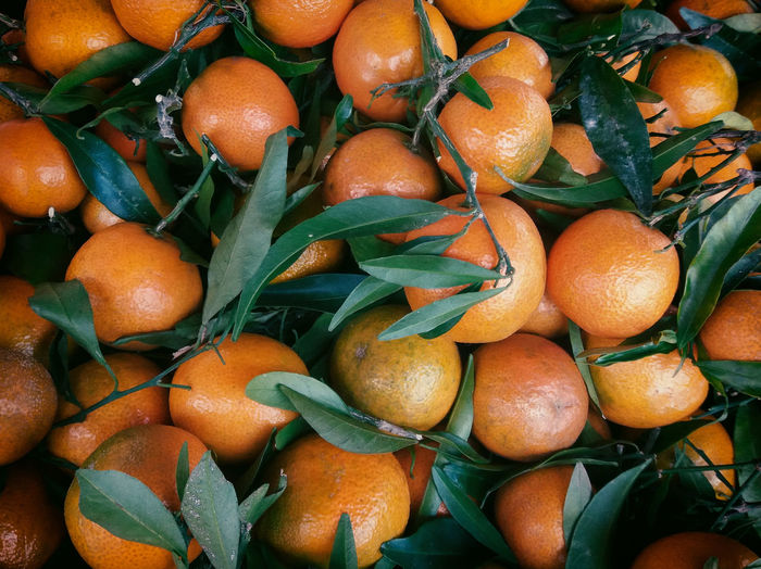 Full frame shot of tangerines and leaves