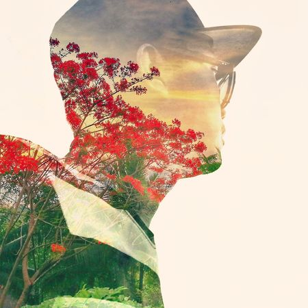 Those redish flowers wither and die soon, Please don't come rain.Its about May and June changing period. Double Exposure Red Flower Changing Seasons Contrast Colors . Mawlamyaing Myanmar View Huwei P9 Taywai Ayechan