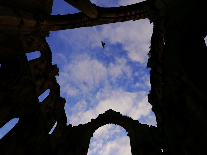 Ancient Civilization Arch Architecture Bird Building Exterior Built Structure Day December December 2016 Fountains Abbey Fountains Abbey Yorkshire Fountains Abbey, Yorkshire History Low Angle View Nature No People Old Ruin Outdoors Sky