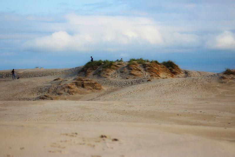 Danish Desert Photojinicphotography Denmark Summer Vacations Råbjerg Mile Nature Photography Nature Sand Dune Desert Arid Climate Water Sand Beach Sky Landscape Grass Cloud - Sky