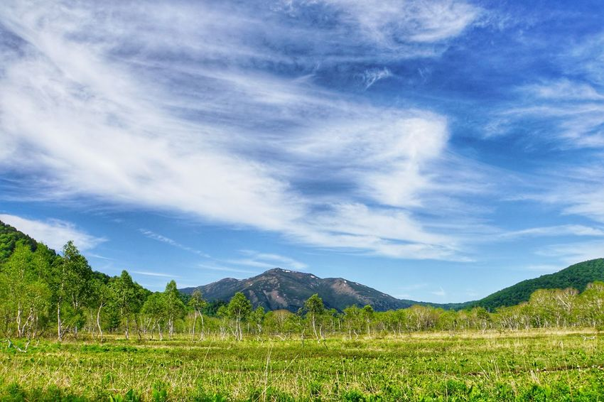 Sky Wetlands Trekking Outdoors Landscape EyeEm Best Shots Nature_collection EyeEm Nature Lover Landscape Correction Mountain View Mountain Mountain Range Mountains Mountain Peak Sky_collection Clear Sky Cloud - Sky Clouds And Sky Nature Pond 池糖