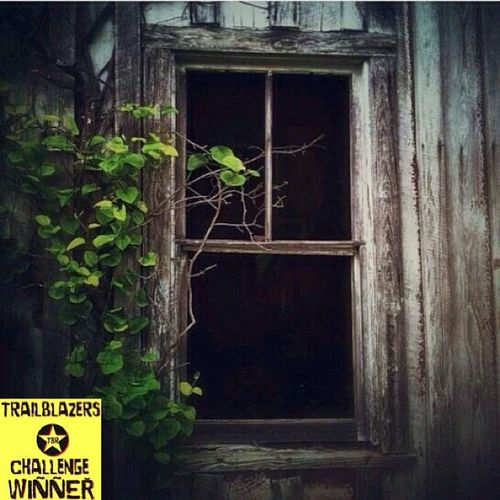 Trailblazers! Our challenge #trb_rear_window has come to an end. With over 800 phenonmal entries choosing winners was the most difficult task. Our judges this week chose 3 winners! Presenting: mike_the_mellow Congratulations on this fabulous entry! Trb_rear_window