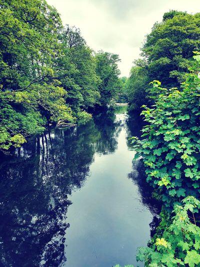 #Ireland #Cork