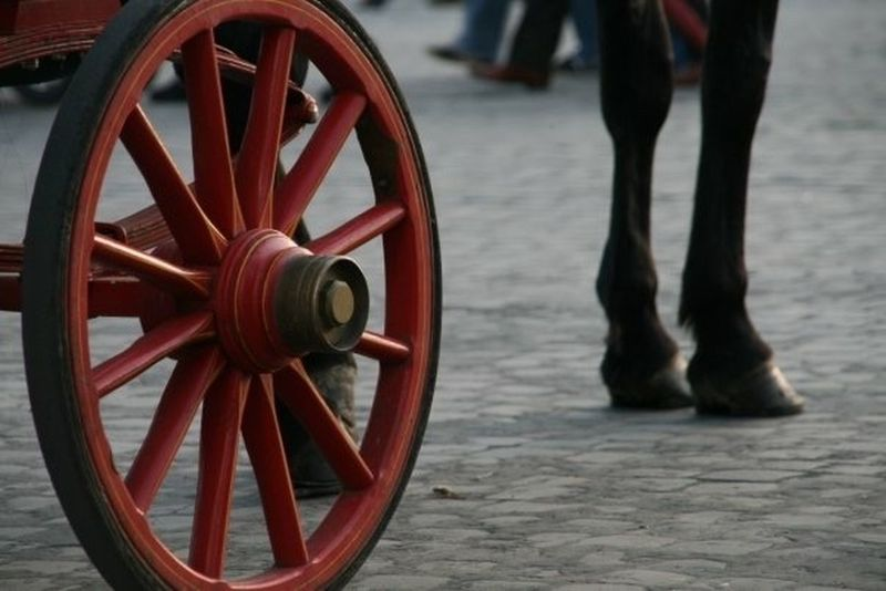 Adult Adults Only Cavalli Cavallo Close-up Day Low Section One Man Only One Person Outdoors People Red Ruota Wheel